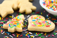 Homemade Sprinkled Sugar Cookies for Christmas