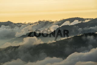 Andes, Bolivar Province, Ecuador, near the inactive stratovolcano Chimborazo in Reserva de Produccion Faunistica Chimborazo, in the Cordillera Occidental