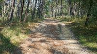 Pilgerweg zwischen Tui und O Porrino, Camino de Santiago, Spanien