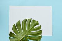 Postcard decorated leav