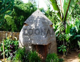 Traditional Dorze tribe house in Chencha , Ethiopia