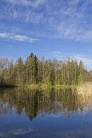 Teich bei Moosham in Oberbayern