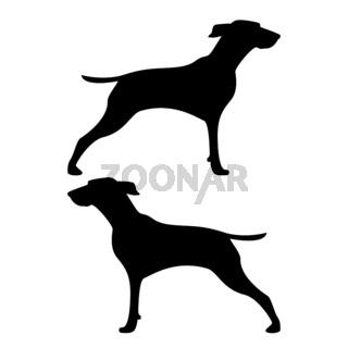 Hunter dog or gundog icon black color illustration flat style simple image