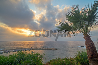 Palm tree and sunset over sea bay