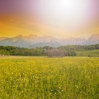 Mountain valley at sunrise