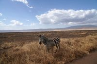 Ngorongoro Nationalpark Tansania