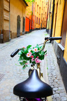 Bicycle with bunch of flowers on handle bar
