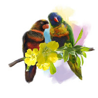 Lorikeet Parrots watercolor