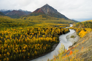 Matanuska River Flows Autumn Season Fall Color Alaska