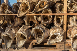 Dried fish heads from cod stacked on a pallet