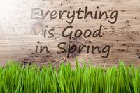 Bright Sunny Wooden Background, Gras, Everything Is Good In Spring