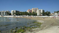 Beach in the Torrevieja resort city. Spain