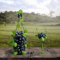 grapes and one glass of wine of the vineyard on a wooden old background