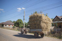 LAO PHONSAVAN TOWN TRANSPORT AGRICULTURE