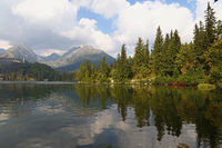 Beautiful landscape with mountain lake and forest