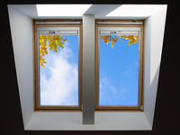 roof windows overlooking the blue sky and autumn oak leaves