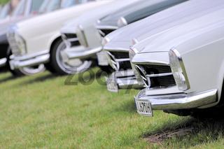 aufgereihte Mercedes Oldtimer