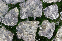 the texture of large stones on the ground, the seams between which are overgrown with green moss