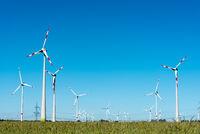 Windräder in einem Getreidefeld