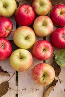 Gesunde frische Bio Äpfel in einer Holzkiste