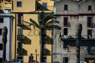 Palmenpromenade in Bosa in Sardinien