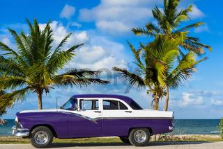 Amerikanischer blau weisser Oldtimer parkt am Strand unter Palmen in Havanna Cuba - Serie Cuba Repor