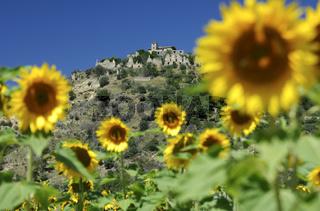 Hügel von Vieux Bras d'Asse, Provence, Frankreich