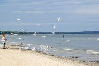 Ostseestrand in Binz
