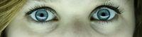 Blaue Augen einer jungen Frau mit Kamerablick