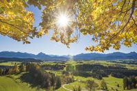 Herbst und Panorama Landschaft im Allgäu mit Berge