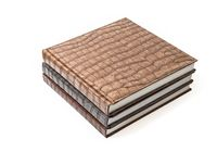 The books in brown leather cover
