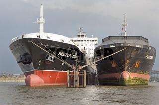 Schiffe im Hamburger Hafen auf Reede in der Norderelbe, Hamburg, Deutschland