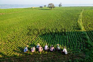 farmers at work around U-Bein Bridge, Amarapura, Myanmar
