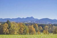 Ausblick vom Taubenberg