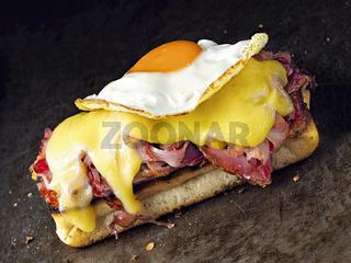 rustic french sandwich croque madam