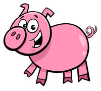 pig or piglet character cartoon illustration