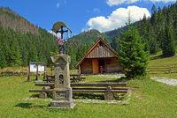 Auf der Huciska Lichtung, West Tatra, Poland.