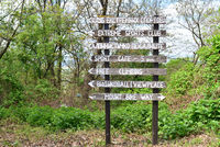 Wooden arrow signs
