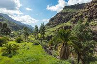 Tal im Gebirge von Gran Canaria, Spanien