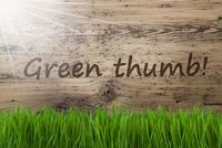 Sunny Wooden Background, Gras, Text Green Thumb