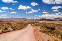 Road through bolivian wilderness