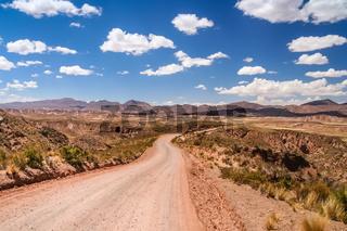 Road through bolivian wilderness
