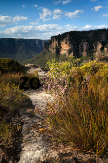 Views across the clifftops Blue Mountains Australia