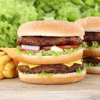 Doubleburger Double Burger Hamburger und Pommes Frites