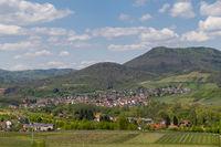 Blick auf das Weindorf Albersweiler
