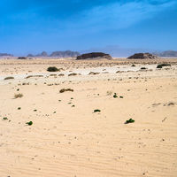 view of Wadi Rum desert