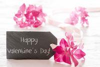 Hydrangea Blossom, Text Happy Valentines Day