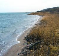 Danish wild beach