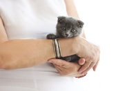 Young woman hold british kittin in her hands