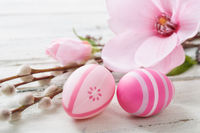 Pink easter eggs on a wooden background with a magnolia